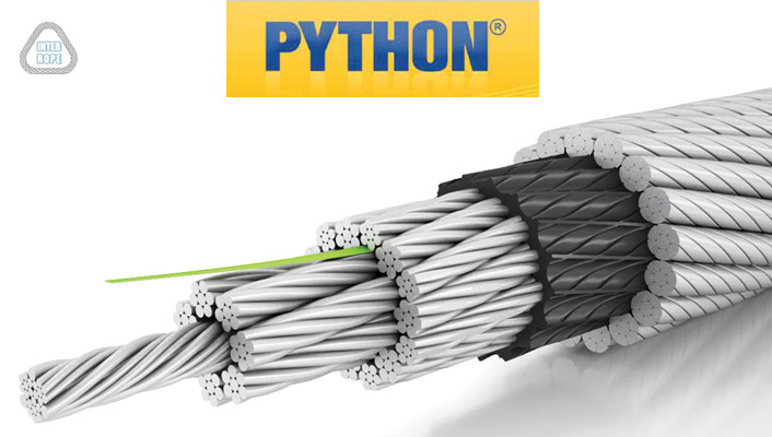 Liny Python